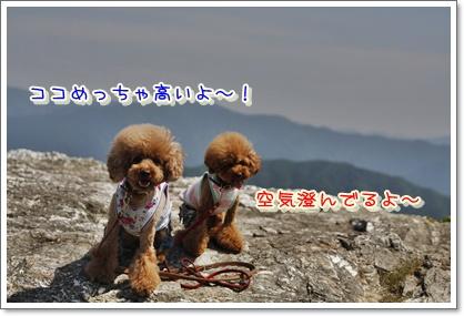 1_20100608002426.jpg