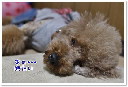 1_20100629001049.jpg