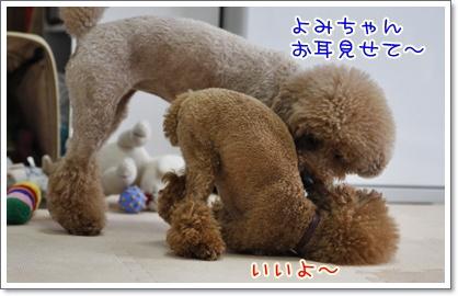 1_20100709002839.jpg