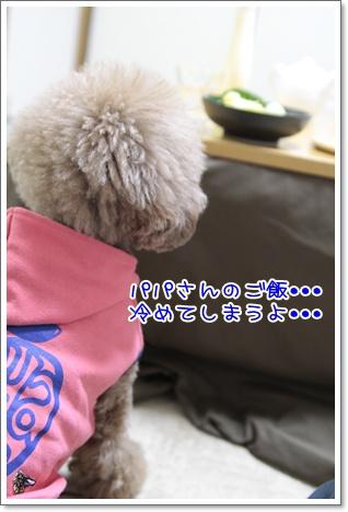 1_20110220114929.jpg