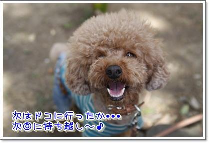 20_20100412003930.jpg