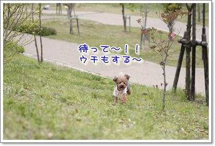 20_20100420193736.jpg