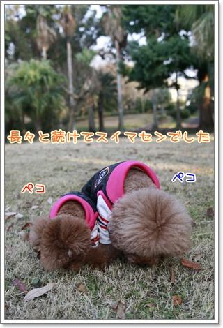 23_20110112230359.jpg