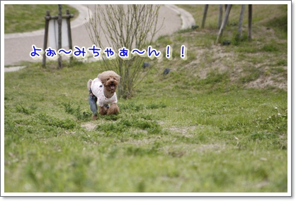 27_20100420194805.jpg
