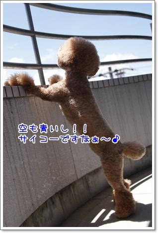 2_20100719220711.jpg