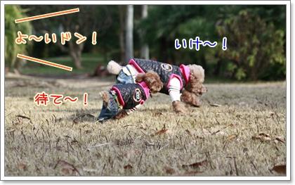 2_20110103213501.jpg