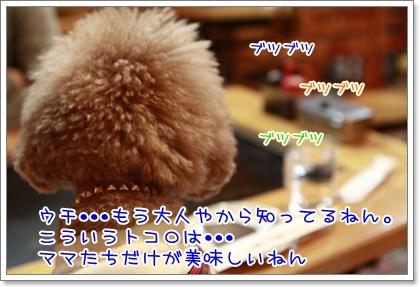 2_20110127222903.jpg