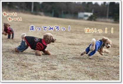 2_20110208230022.jpg