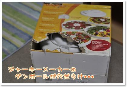 2_20110228185929.jpg