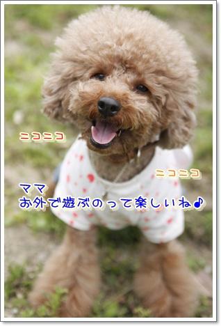 31_20100420194804.jpg
