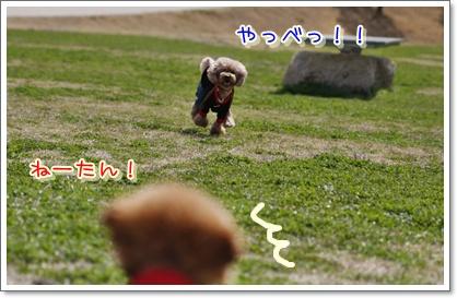 3_20100315230050.jpg