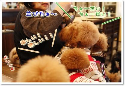 3_20100316195058.jpg