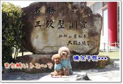 3_20100412205236.jpg