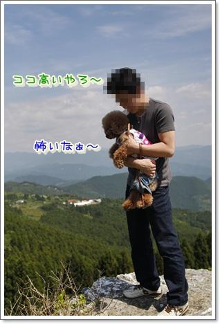 3_20100608002426.jpg