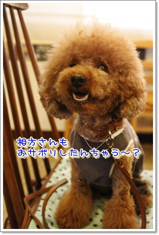 3_20100617002759.jpg