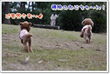 3_20100620225012.jpg