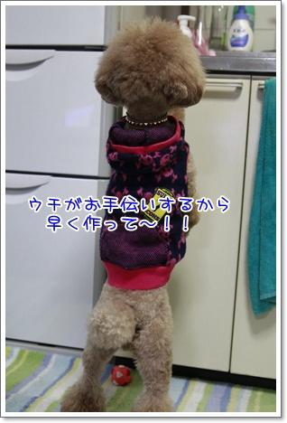 3_20101227205022.jpg