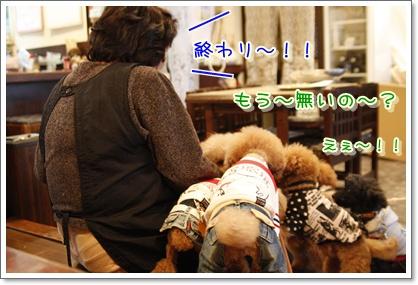 4_20100316195058.jpg