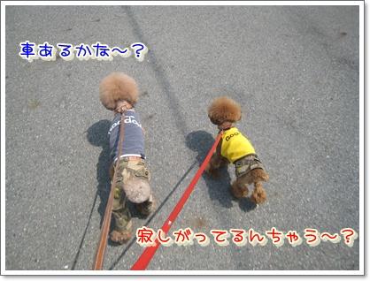 4_20100509211619.jpg