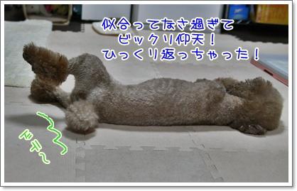 4_20100906225107.jpg
