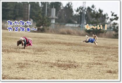 4_20110208230022.jpg