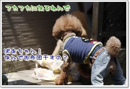 5_20100506005330.jpg