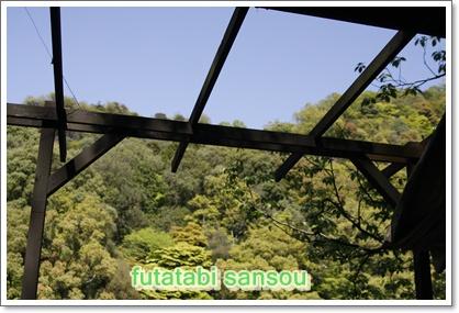 5_20100506211026.jpg