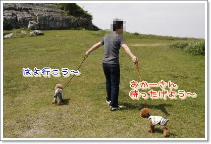 5_20100608002426.jpg