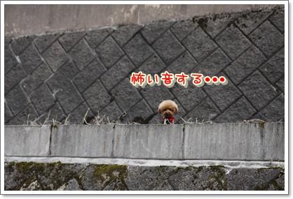 6_20100329223526.jpg