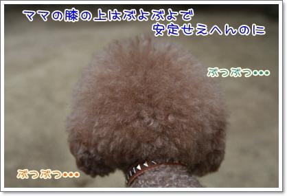 6_20100816230750.jpg
