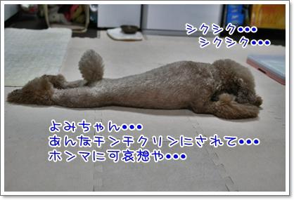 6_20100906225106.jpg