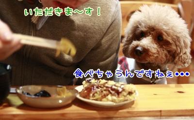 6_20110127223640.jpg