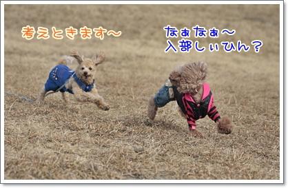 6_20110208230020.jpg