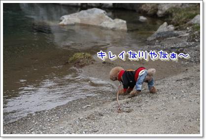 7_20100329225407.jpg