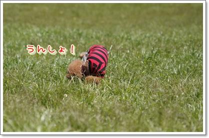 7_20100503205508.jpg