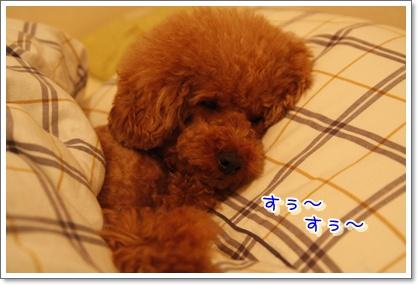 7_20100611003221.jpg