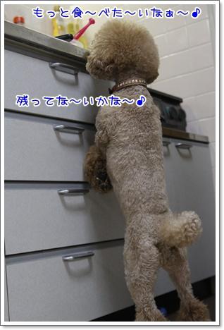 7_20100713194457.jpg