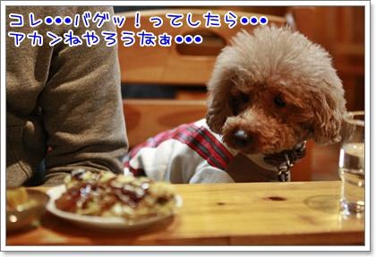 7_20110127223640.jpg