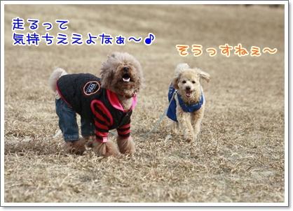 7_20110208230714.jpg