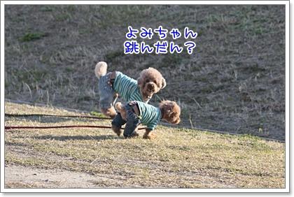 7_20110328225200.jpg