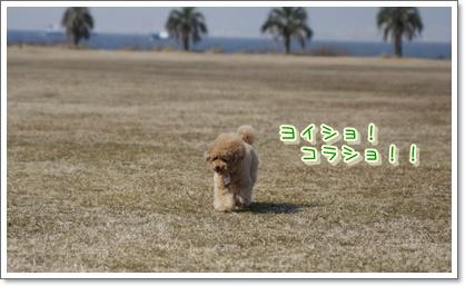 8_20100222000805.jpg