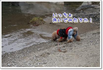 8_20100329225407.jpg