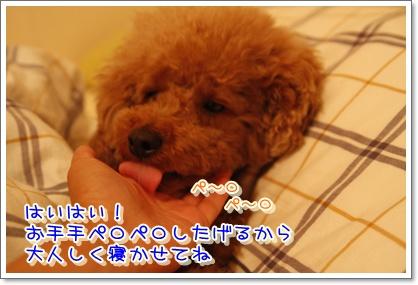 8_20100611003221.jpg