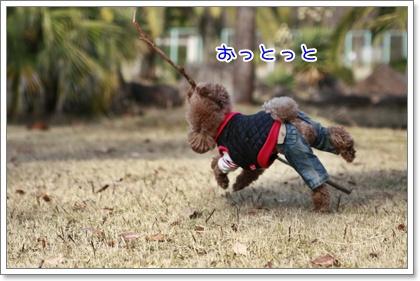 8_20110103214837.jpg