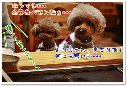 8_20110127223640.jpg