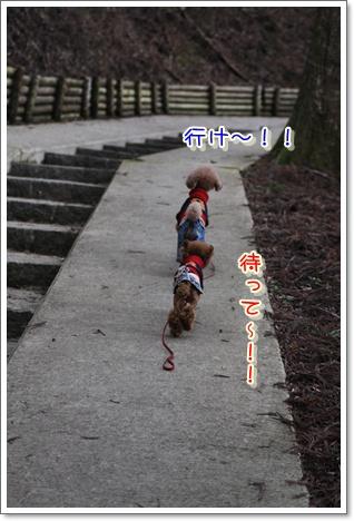 9_20100329225407.jpg