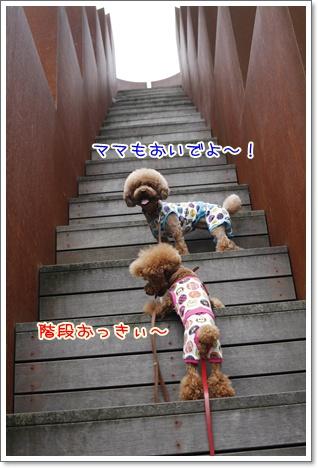 9_20100711171631.jpg