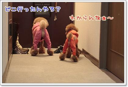 9_20110305220550.jpg