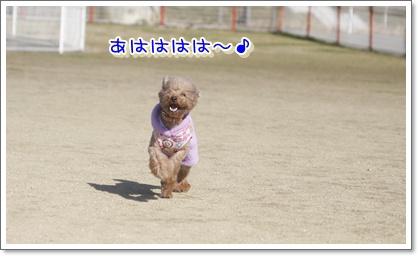 b_20100124212640.jpg