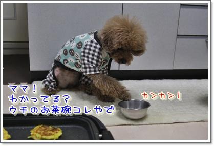 f_20100123022349.jpg
